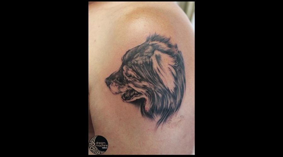Black Grey Shoulder