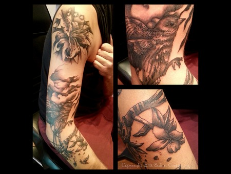 Black And Grey Tattoo  Nature  Bird     Black Grey Arm