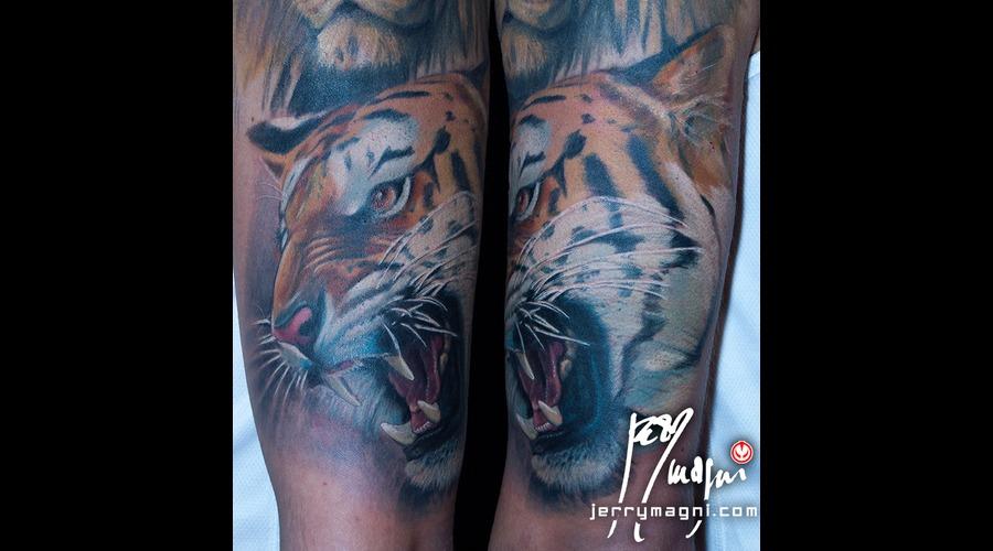 Tiger Color Arm