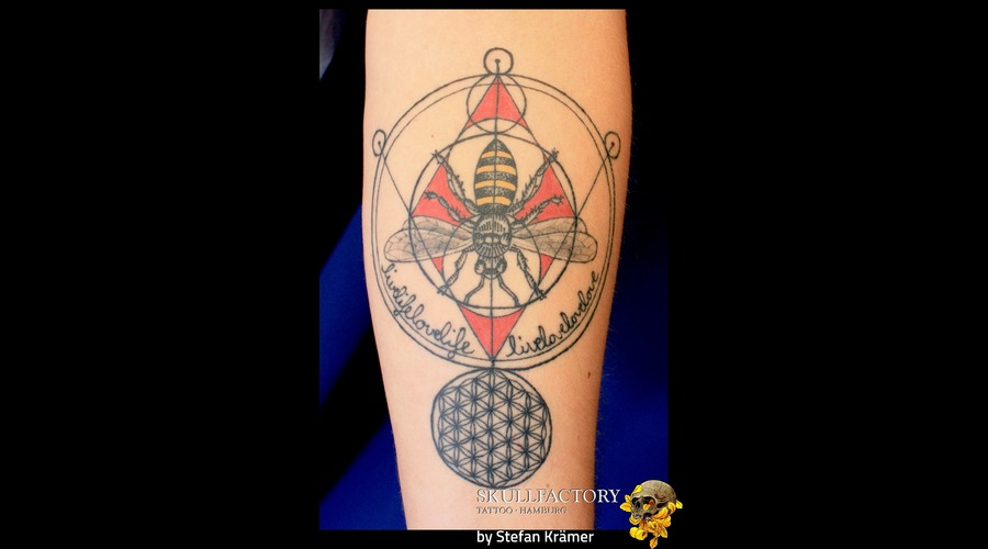 Wasp Color Forearm
