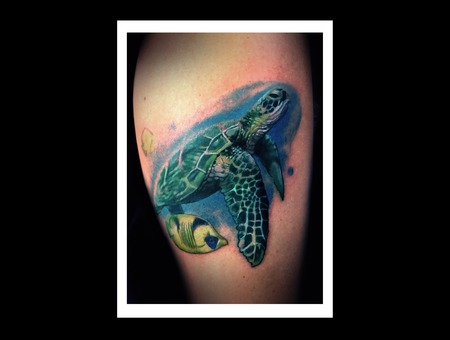 Sea Turtle Underwater Water Realistic Seaturtle Green Fish  Color Lower Leg