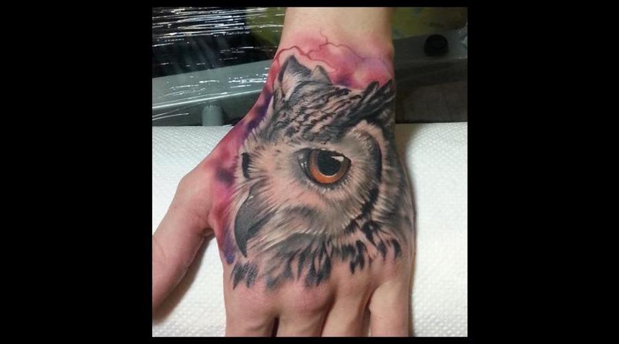 Realistic  Color  Owl Color Arm
