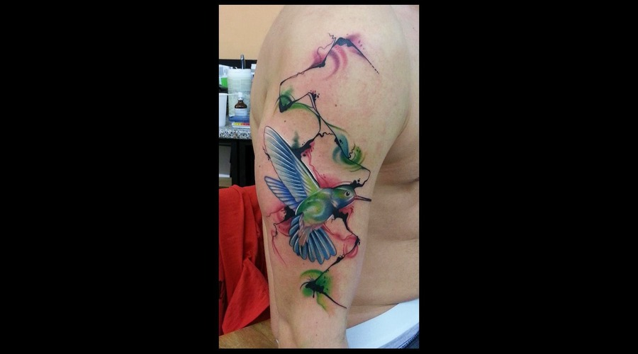Abstract  Color  Bird Color Arm