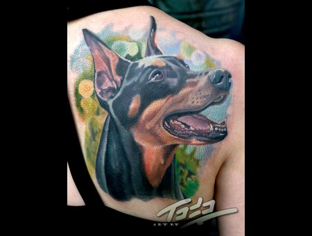 Doberman Portrait Color
