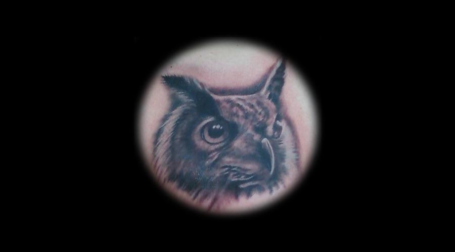 Owl Chest