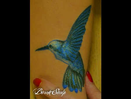 Blue Bird Arm