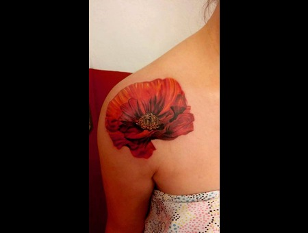 Poppy Shoulder