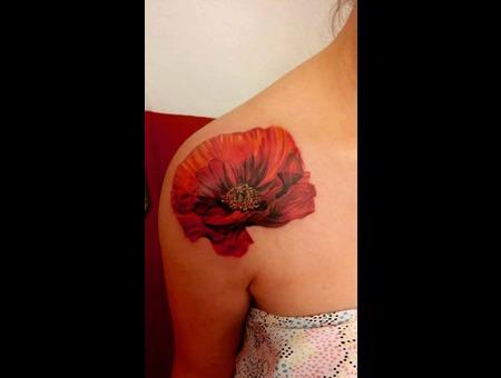 Poppy Shoulder