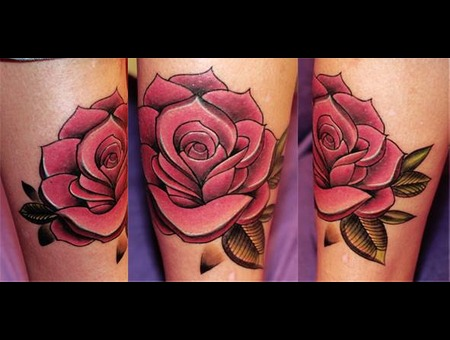 Rose New School Lower Leg