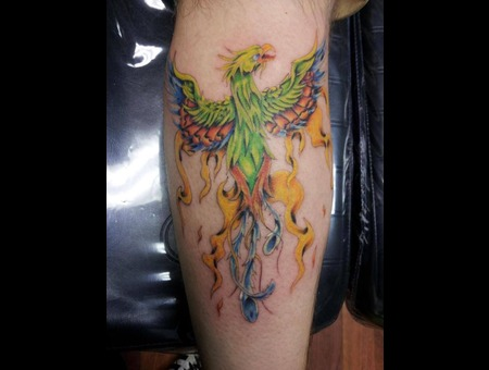 Color  Phoenix  Calf Lower Leg