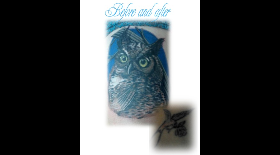 Owl  Cover Up  Color  Thigh