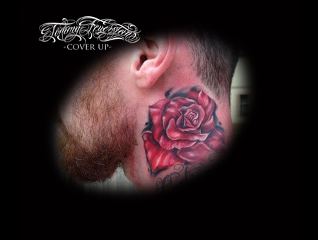 Cover Up  Color  Rose Neck
