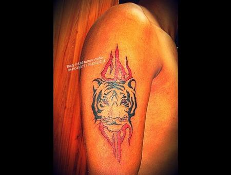 Tiger  Arm