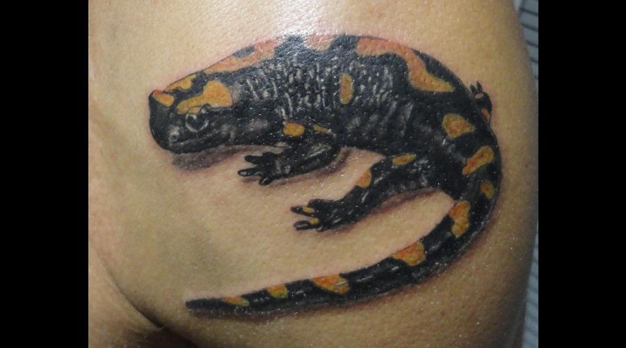 Skull Tattoos  Bird Tattoos  Angel Tattoos  Tattoos  Tattnroll  Tatt'n'roll Shoulder
