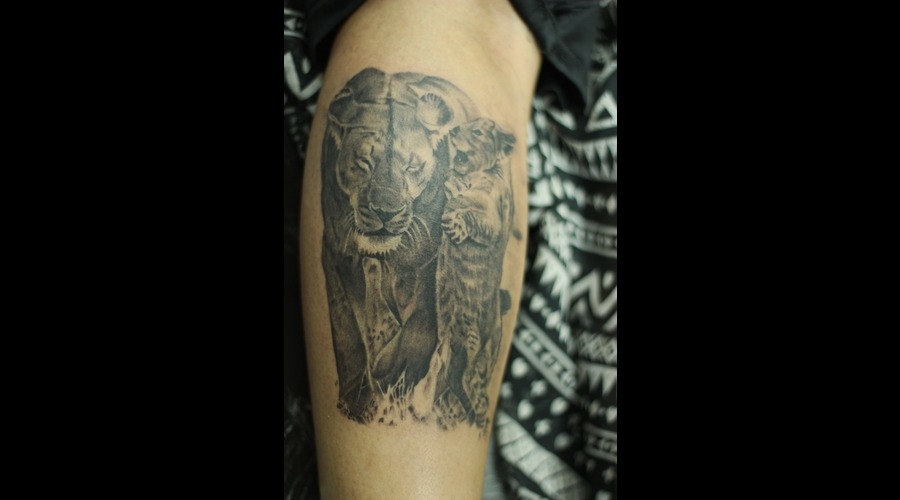 Lion Lower Leg
