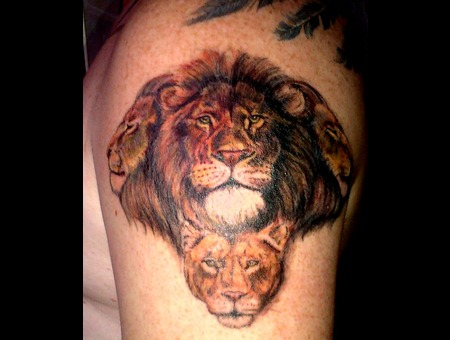 Lion Lions Realistic Color Shoulder