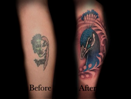 Cover Up  Coverup  Colour  Colour  Peacock  Bird Lower Leg