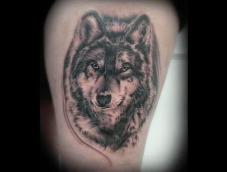 Wolf  Animal  Wildlife  Portrait  Realistic  Photo Realism  Thigh