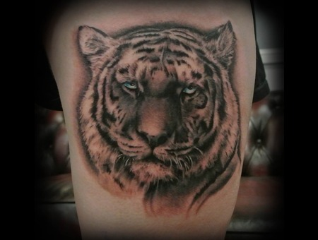 Tiger  Big Cat  Cat  Portrait  Animal  Photo Realism  Realistic  Realism   Thigh
