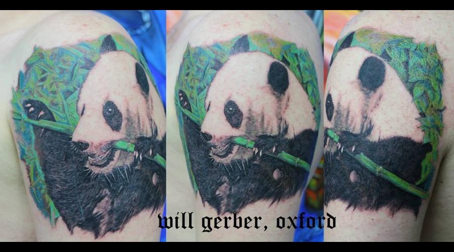 Animal  Panda  Wildlife Shoulder