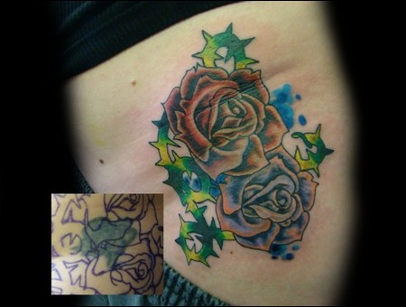 Cover Up Roses Thorns Hip