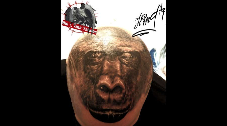 Animal  Gorilla Head