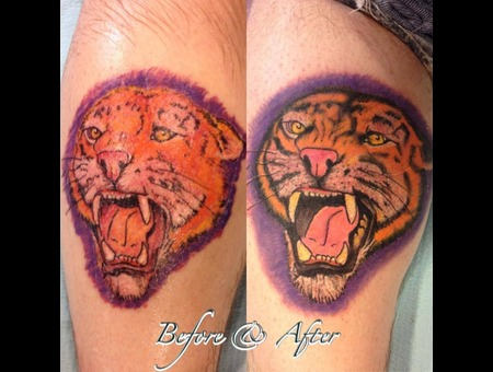Rework  Tiger   Lower Leg