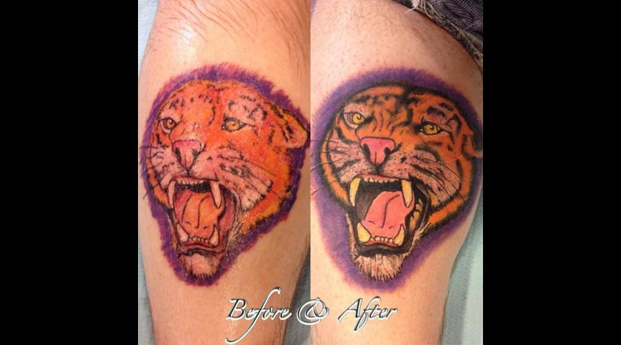 Rework  Tiger   Lower Leg
