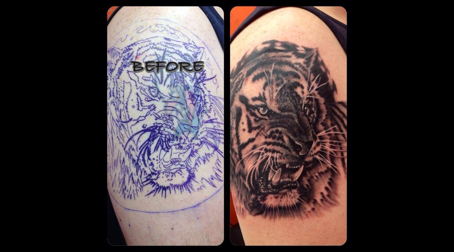 Black And Grey  Tiger  Cover Up  Realism Arm