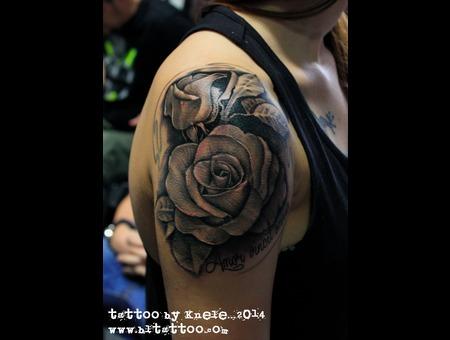 Rose Roses Flower