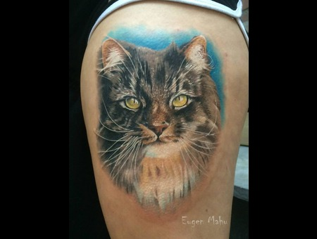 Cat  Realistic  Tattoo  Art  Realism Hip