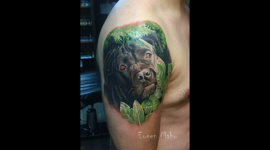 Portrait  Tattoo  Art  Realistic  Realism  Dog Arm