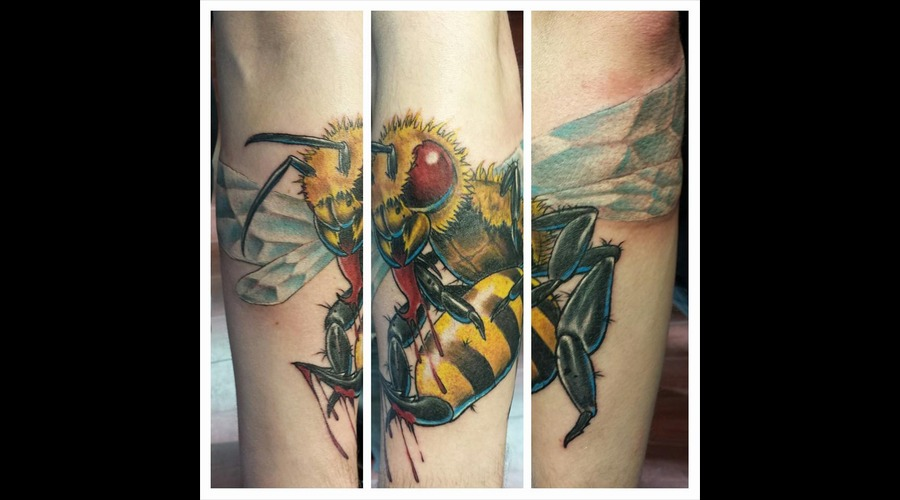 Bee  Killer Bee  Bee Tattoo  New School  Custom Forearm