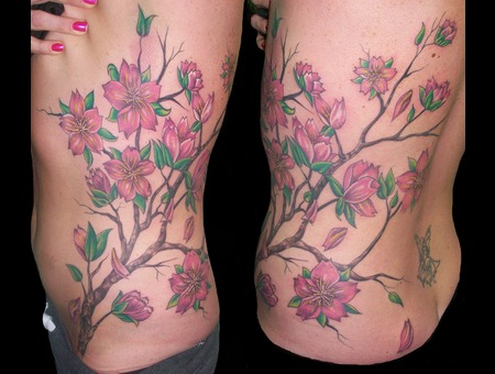 Cherry Blossoms  Flowers Ribs
