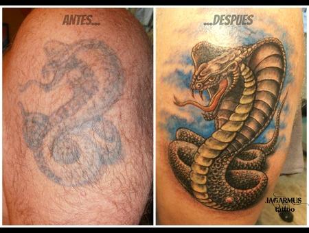 Cobra Serpiente Snake Cover Up Shoulder