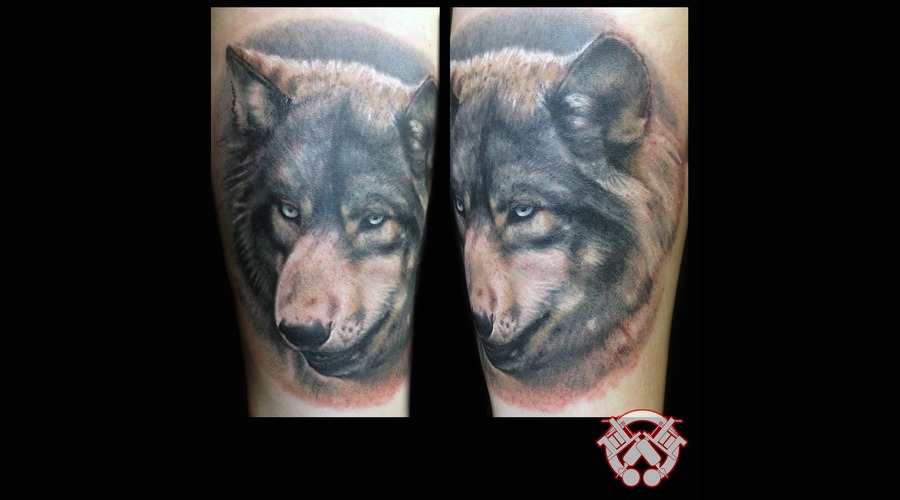 Wolf Forearm