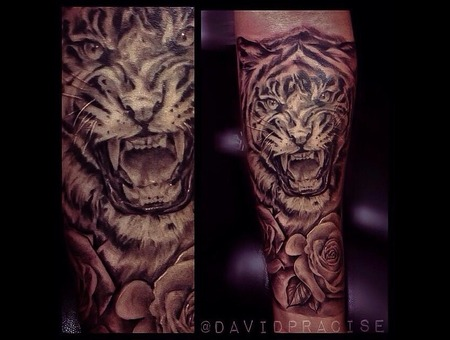 Tiger And Roses Forearm