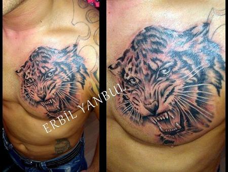 Tiger  Tiger Tattoo  Kaplan  Kaplan Dövmesi  Erbil Yanbul  Scorpionink  Chest