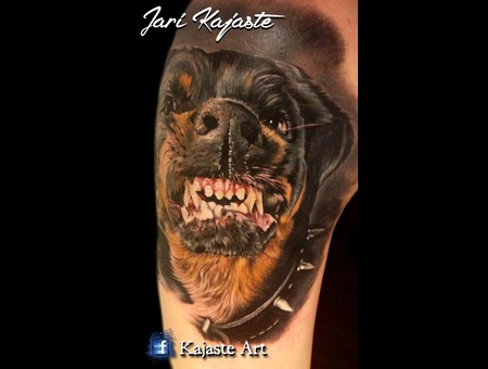 Rottweiler  Dog  Portrait Arm