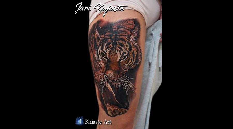 Tiger  Wildlife  Nature Thigh