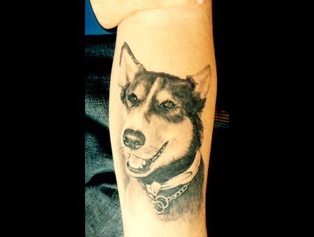 Dogportrait Blackandgray Forearm