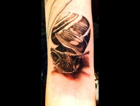 Snail Blackandgray Arm