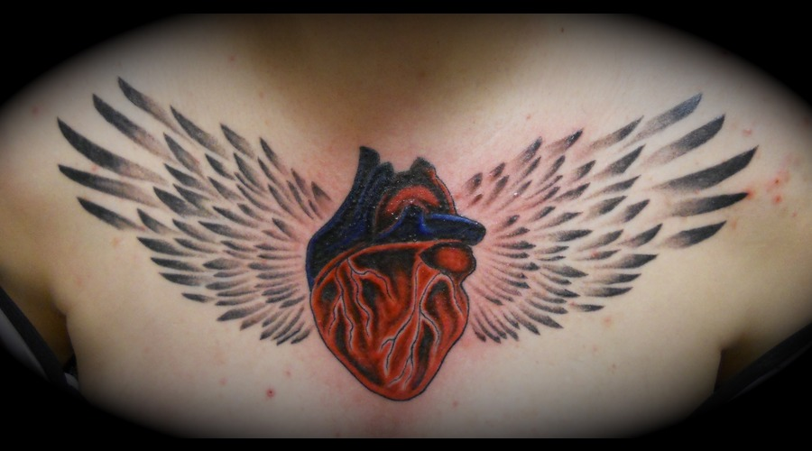 Anatomical Heart  Winged Heart Chest