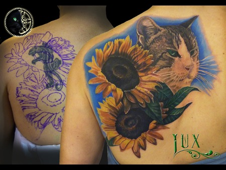 Cat  Sunflowers Back
