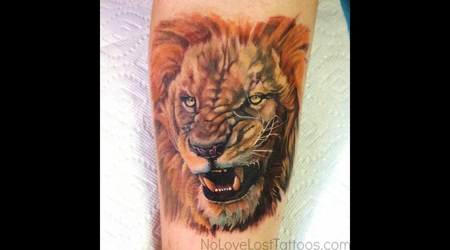 Realism  Animal  Portrait  Lion