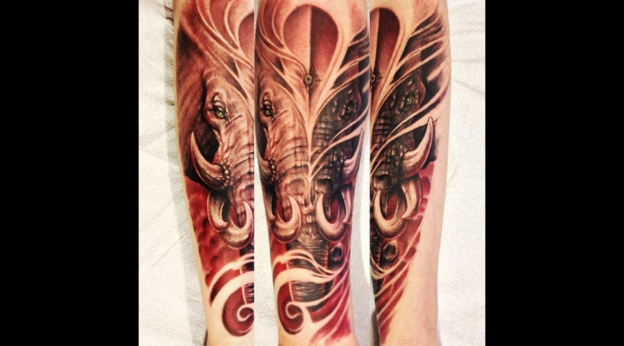 Elephant Arm