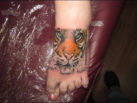 Tiger Realism Photo Cat Animal Foot