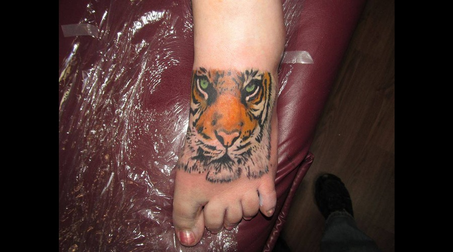 Tiger Realism Photo Cat Animal Foot
