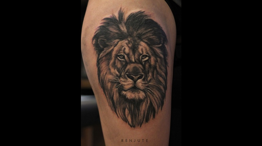 Lion  Portrait  Riga  Renjute Hip