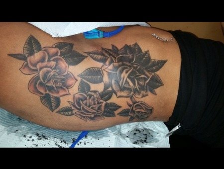 Cover Up  Roses